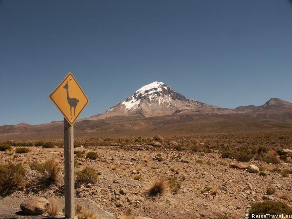 Auf dem Berg Morro de Arica, mitten in der Stadt, wird Geschichte Lebendig. Hier fand der sogenannte Salpeterkrieg (1879 bis 1884) statt,